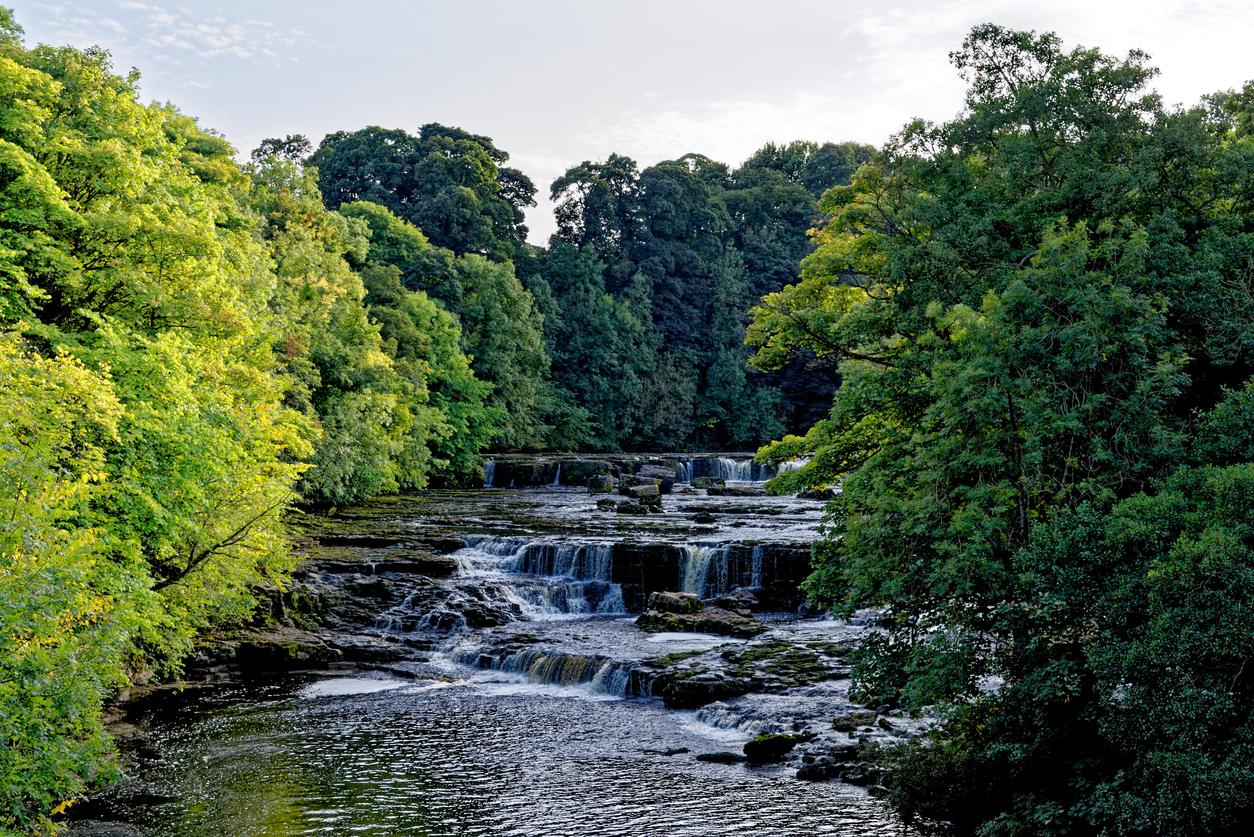 Best North Yorkshire Waterfalls